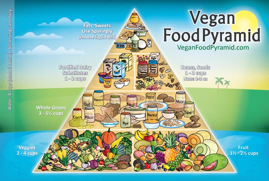 What Is A Vegan Diet Veggiebucks