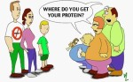 where do you get your protein